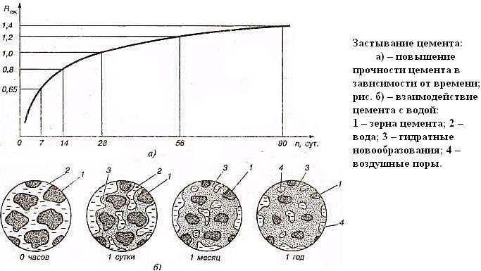 Процесс застывания цементной смеси