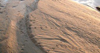Особенности речного песка