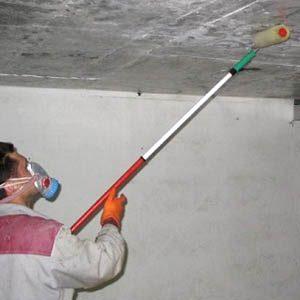 Как быстро избавиться от плесени в подполье и подвале